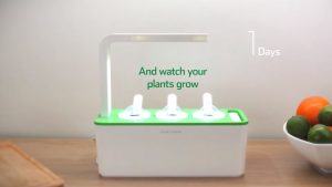 Use-Click-&-Grow-3